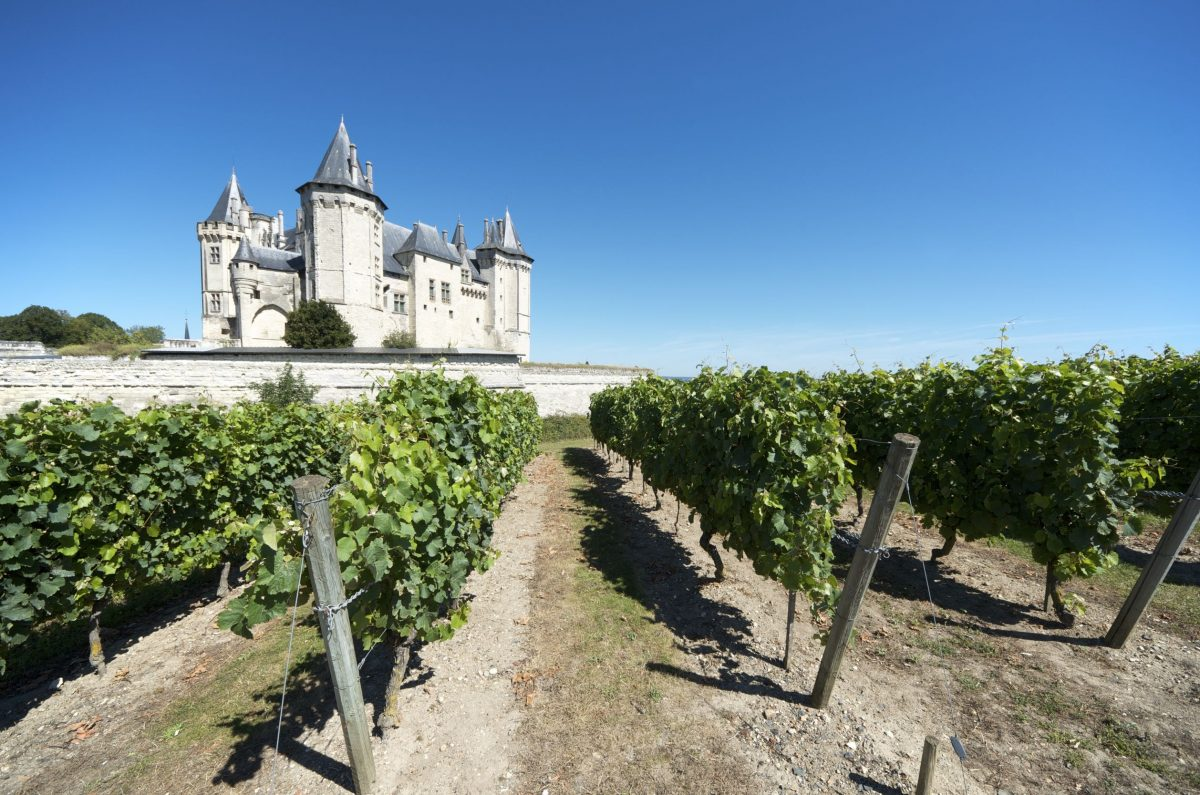 sparkling tour loire valley