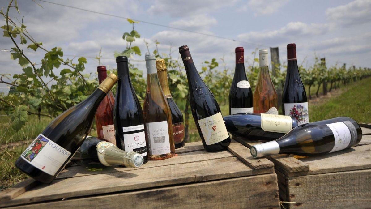 Fontevraud wine tour Loire Valley